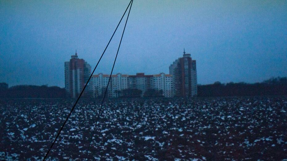 Художник Николай Онищенко покажет воронежцам «Новую природу»