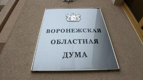 Облдума утвердила бюджет Воронежской области на 2017 год