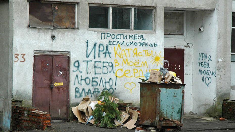 Общественная палата предложила ставить на учет тех, кто захламляет Воронеж