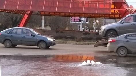 В Воронеже дорогу на памятнике Славы залило водой из-за прорыва трубопровода