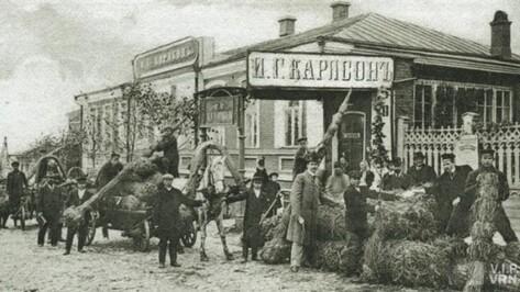 Воронежцев приглашают на краеведческую экскурсию о сосне Карлсона