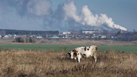 Воронежская область заняла 51-е место национального экорейтинга