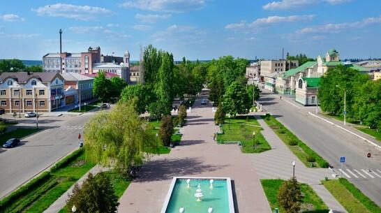 Борисоглебцев пригласили на бесплатный тренинг для самозанятых