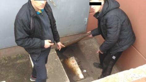 В Воронеже полиция поймала серийных воров автомобильных номеров
