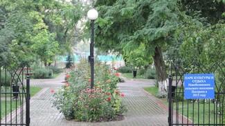 Новобелая Кантемировского района поборется за звание самого красивого села