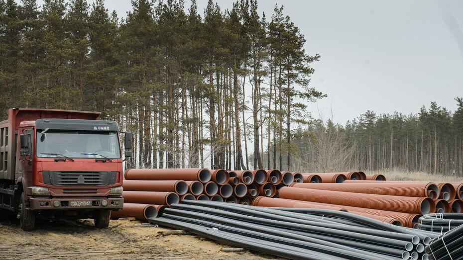 Строительство таможенного терминала под Воронежем начнется летом
