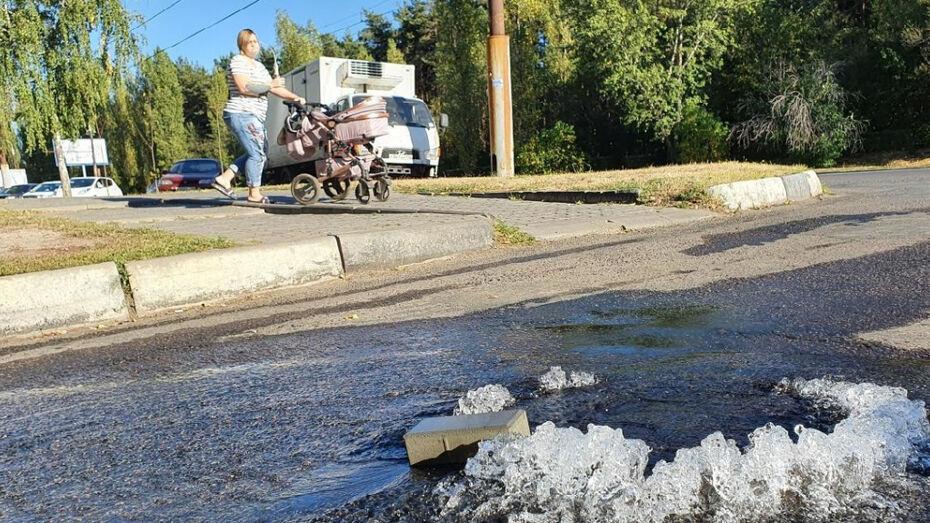 На улице Южно-Моравской в Воронеже прорвало водопровод