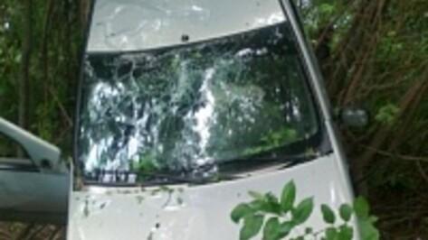 В Воронежской области вчера произошло 145 ДТП
