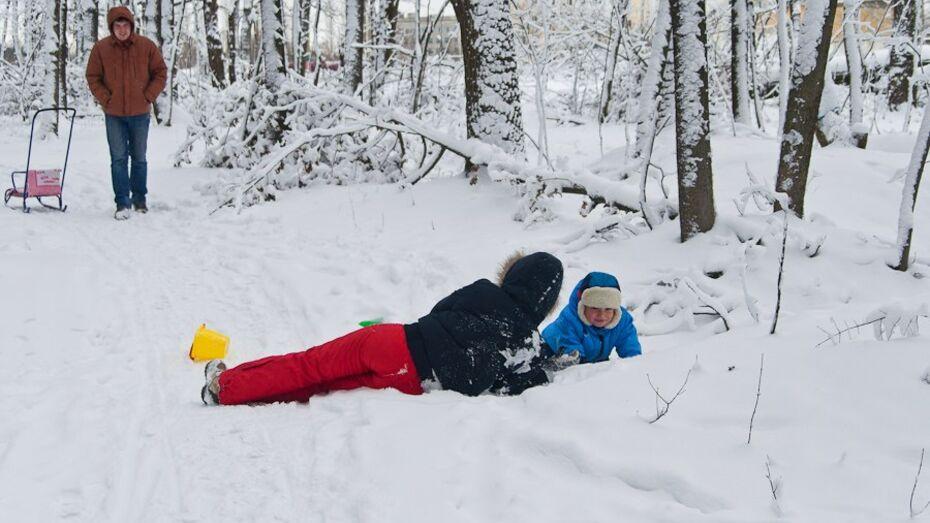 Выходные в Воронеже будут теплыми и снежными