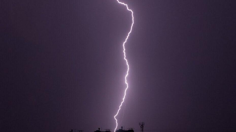 В Воронежской области объявили желтый уровень погодной опасности
