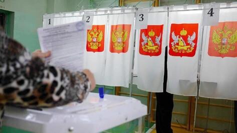 Большинство мест в гордуме Воронежа получили представители «Единой России»