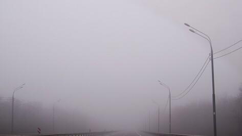 Воронежские дорожники предупредили водителей о тумане и сильном ветре