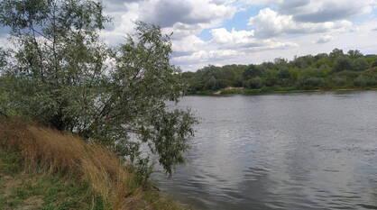 В Воронежской области обследуют 63 водоема для выработки оптимальных охранных решений