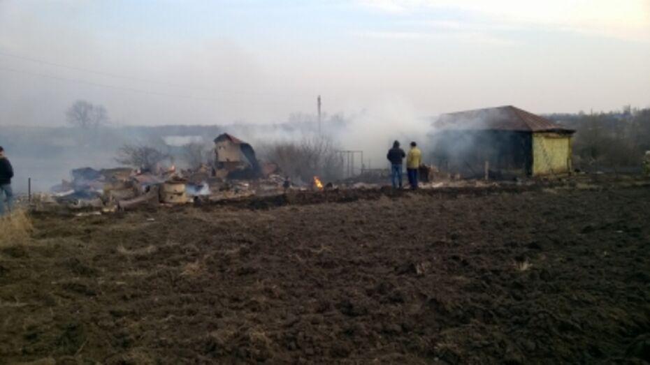 В Воронежской области из-за костра на огороде сгорели три дома