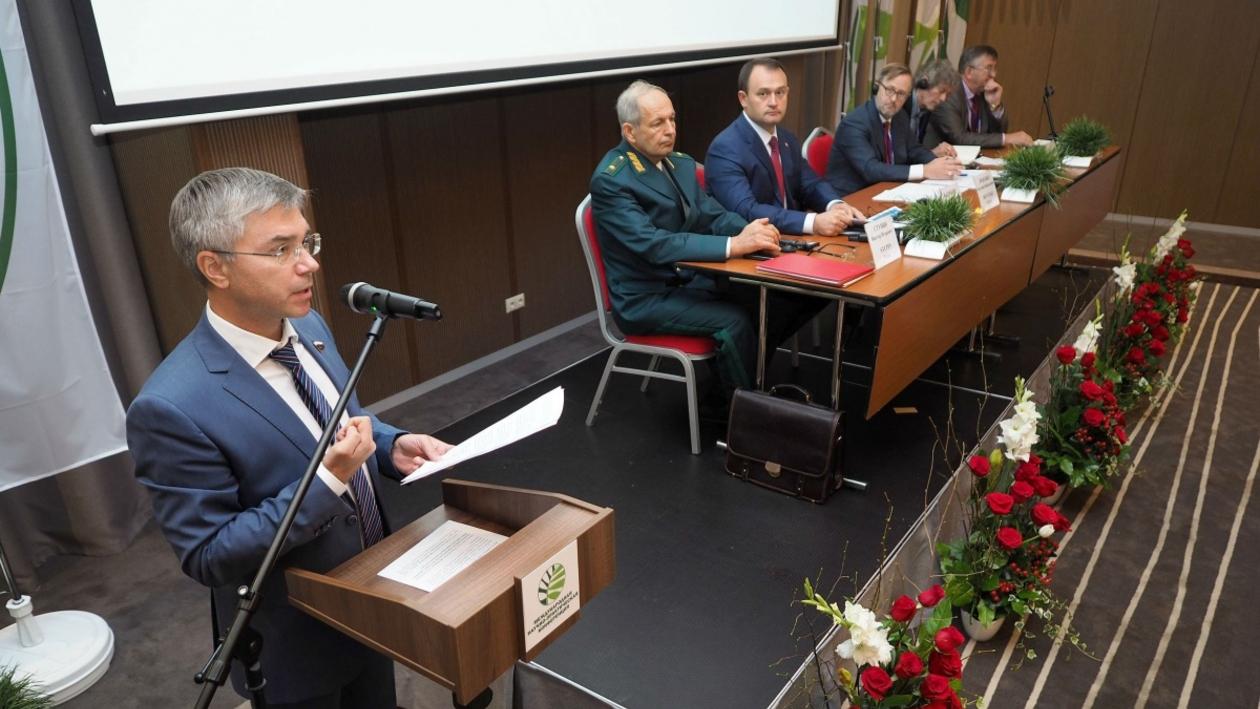Международные эксперты в Воронеже обсудили зеленую инфраструктуру городов