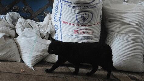Воронежские мукомолы и хлебопеки получат почти 100 млн рублей из федеральной казны