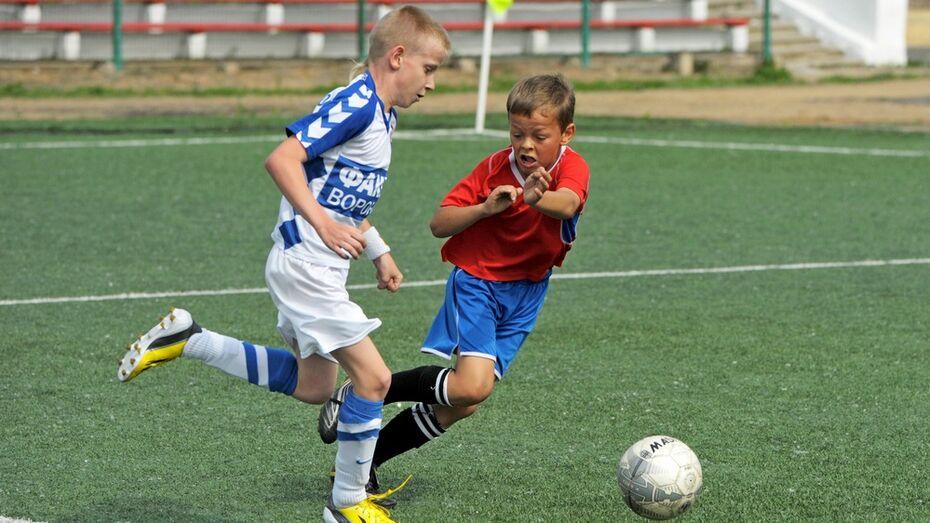 Воронежская область получит 8,4 млн рублей на футбольные поля для спортшкол