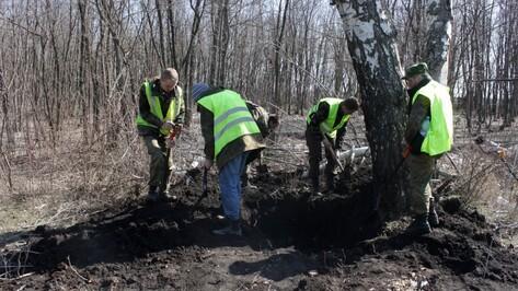 Воронежские поисковики нашли фрагменты гроба неизвестного летчика