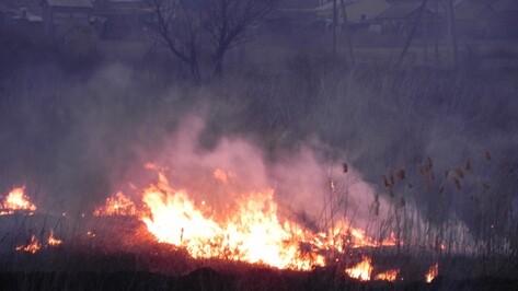 В Кантемировском районе введен особый противопожарный режим