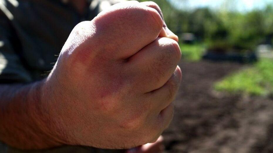 В Семилуках трое уроженцев Украины избили и обокрали местного жителя