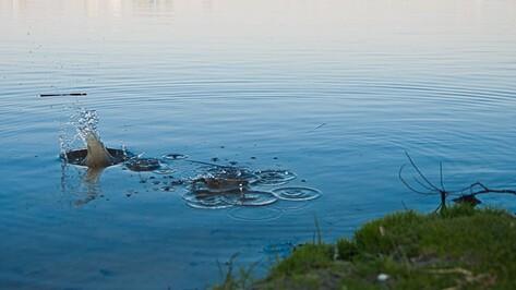 В Эртильском районе утонул житель Липецкой области