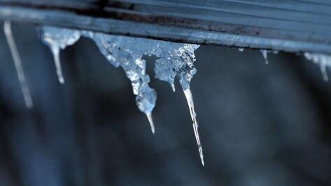 Спасатели предупредили воронежцев о возможном падении сосулек из-за потепления