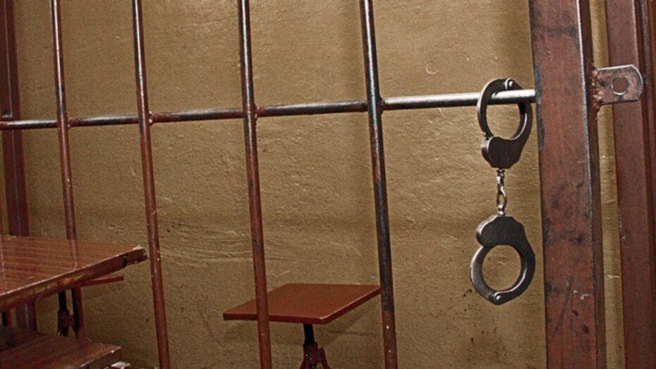 В Воронеже задержаны несовершеннолетние грабители, на счету которых восемь преступных эпизодов