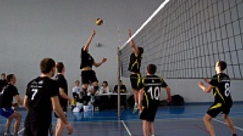 В Воронеже состоялся корпоративный чемпионат города по волейболу