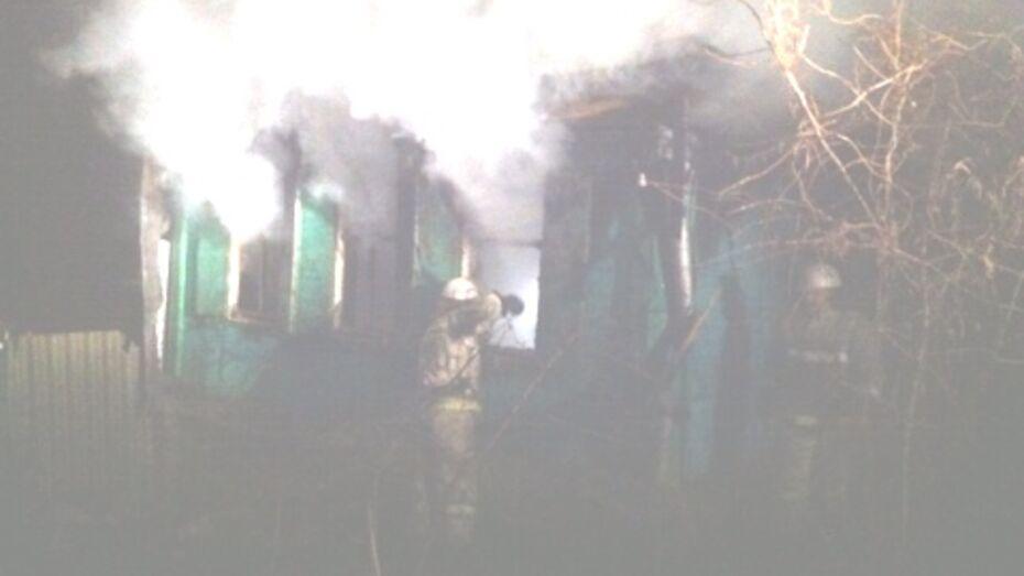 В Воронежской области на пожаре погибли 4-летняя девочка с матерью