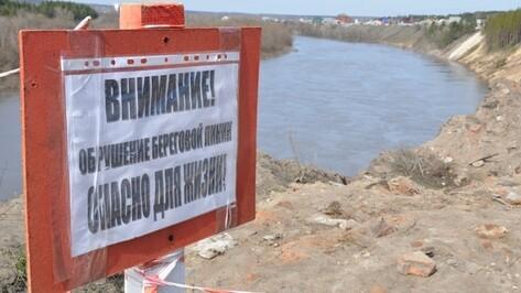 Специалисты проработают варианты укрепления берега Дона в Павловске