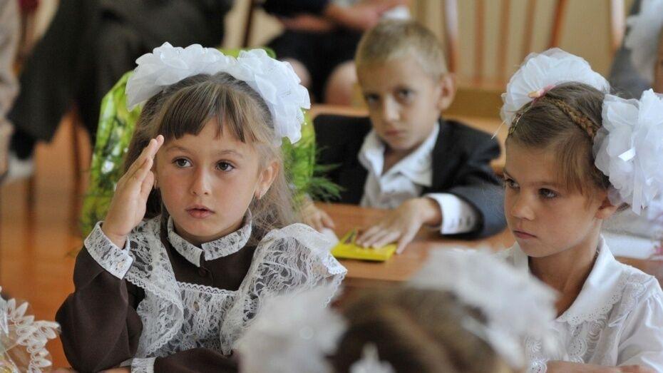Число воронежских школьников вырастет на 5% в новом учебном году