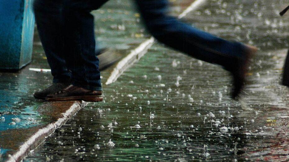 Первая неделя весны в Воронеже будет теплой и дождливой