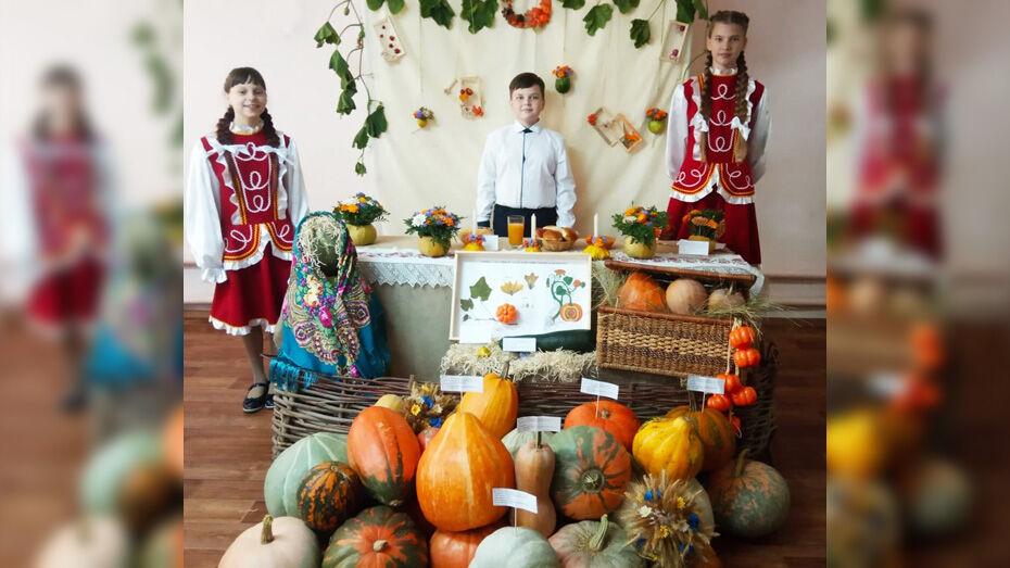 Юные исследователи из Борисоглебска стали призерами областного этапа конкурса «Юннат-2021»
