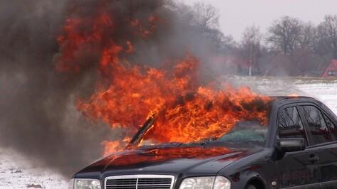 В «черную» пятницу и в ночь после нее в Воронежской области загорелось 6 машин