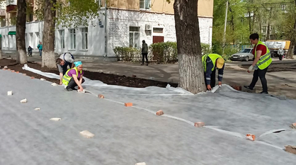 Мэрия отчиталась о благоустройстве газонов и тротуаров в трех районах Воронежа