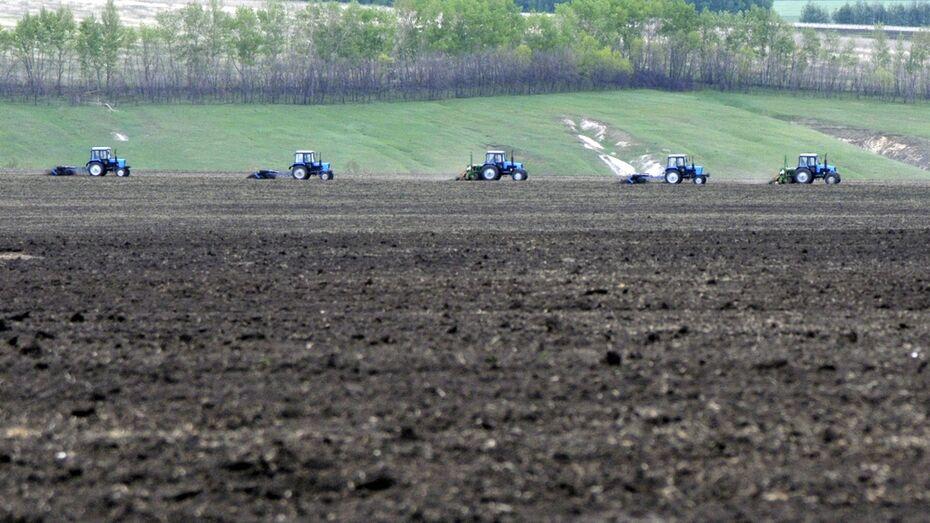 Воронежские аграрии получат более 2 млрд рублей на возмещение ставок по инвесткредитам