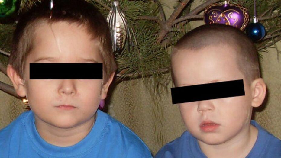 Толкнуть женщину на убийство сыновей мог семейный конфликт