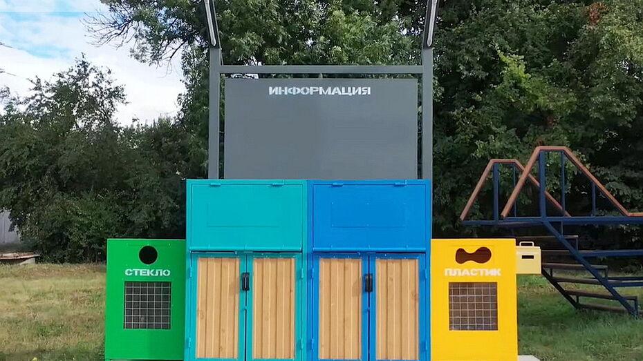 В Воронежской области выделили 500 млн рублей на систему раздельного сбора мусора