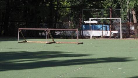 Мэрия Воронежа пообещала заново построить площадки для спортшколы после их сноса
