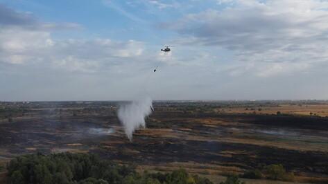 Все крупные пожары в Воронежской области ликвидировали