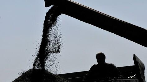 Производители сельхозтехники из России и зарубежья откроют в Воронеже «Агросезон – 2015»