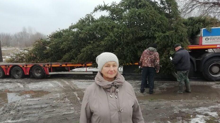 Супруги из богучарского села Липчанка подарили землякам 12-метровую ель