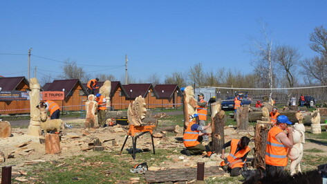 В Каширском районе на фестивале «Битва бензопил» мастера сделали 28 деревянных скульптур