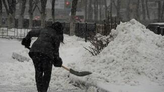 Воронежские коммунальщики подготовились к снегопаду в новогодние праздники