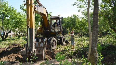 В воробьевском селе Лещаное из яблоневого сада сделают парк отдыха