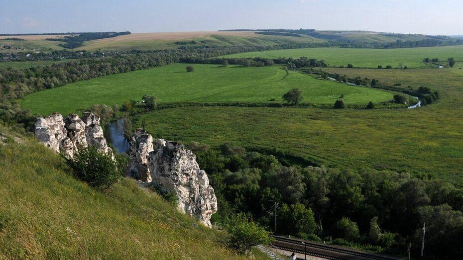 Под Воронежем откроется исследовательская арт-резиденция