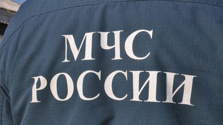 Ольховатские спасатели попросили отозваться очевидцев сентябрьского лесного пожара