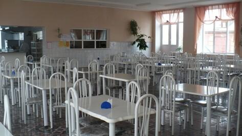 Губернатор раскритиковал организацию питания в воронежских школах