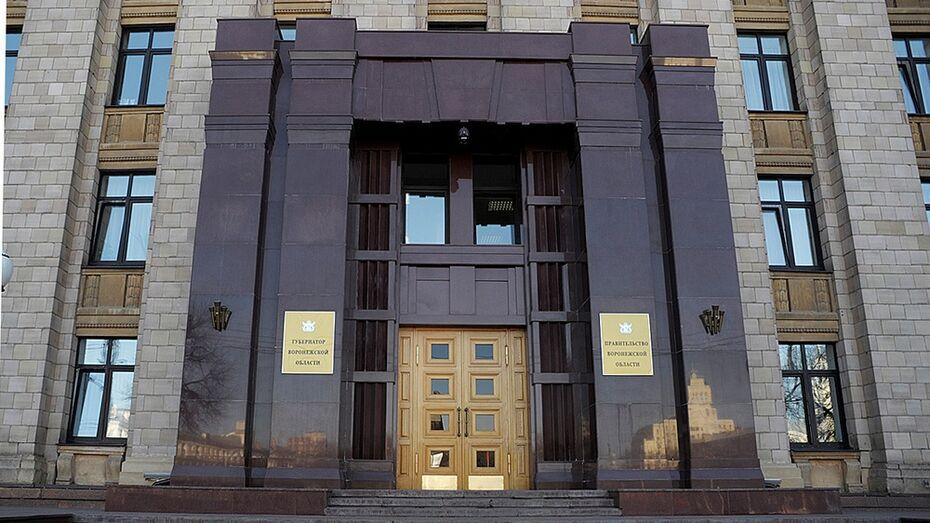Руководителя департамента культуры Воронежской области выберут по конкурсу