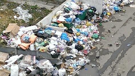 Мусорные свалки в Семилуках появились из-за поломки коммунальной техники